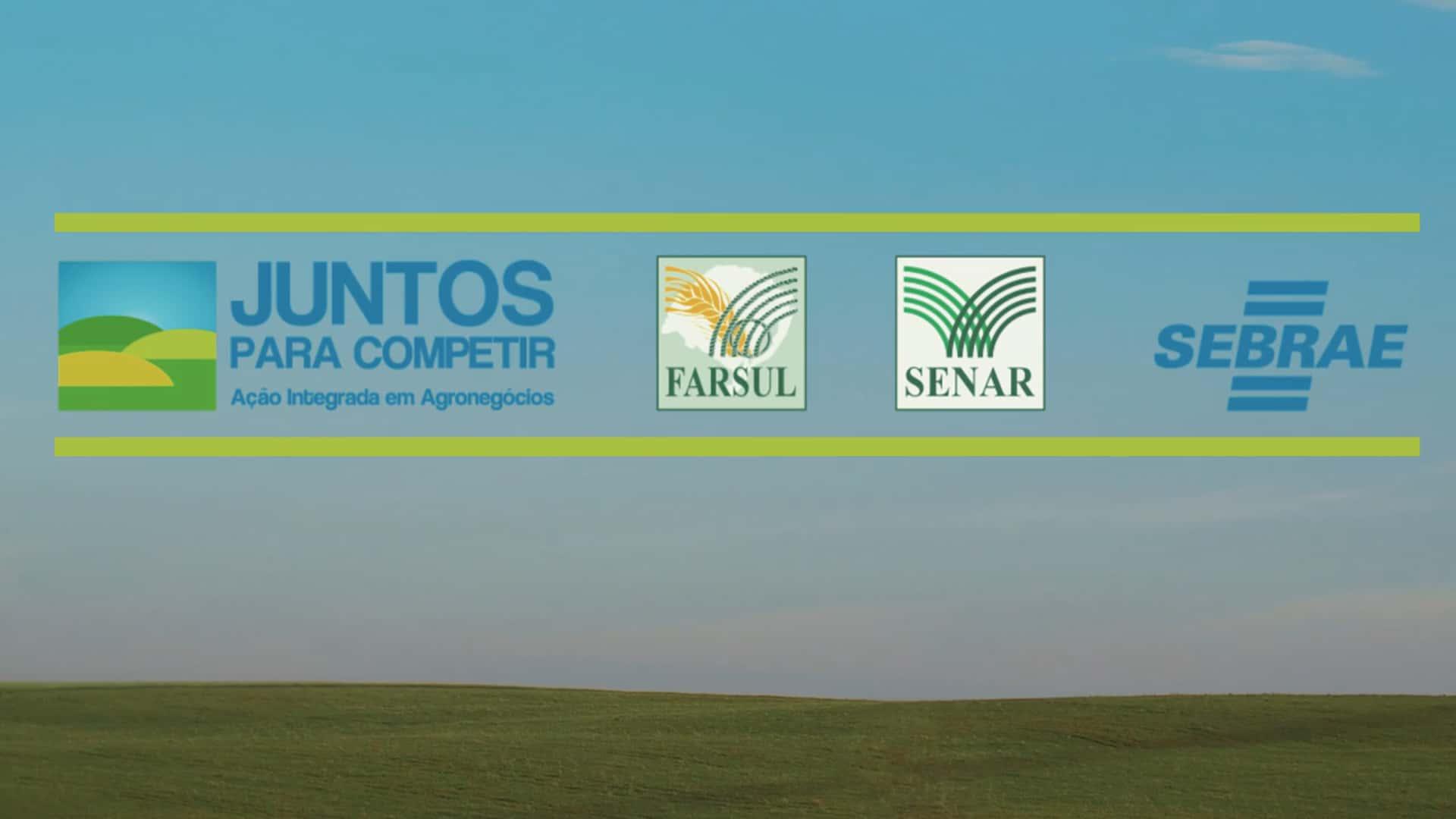 SEBRAE RS / Juntos Para Competir